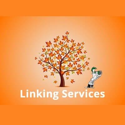 Linking Service   Spaculus Portfolio